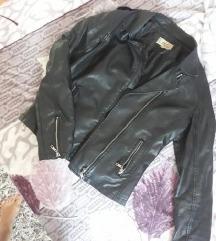 Crna jaknica (eko koza)