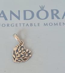 PANDORA Family tree