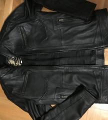 Muska jakna
