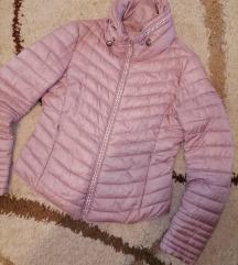 Prolecna jaknica S