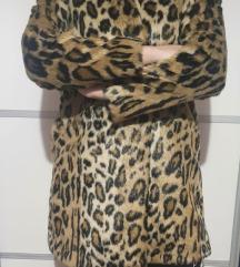 Tigrasta bunda