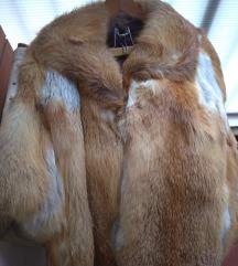 Bunda (lisica)