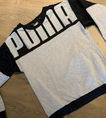 Puma duks