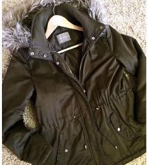 Maslinasta jaknica-Orsay