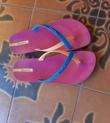 Ipomena papuce
