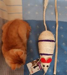 Grebalica za mace, NOVA