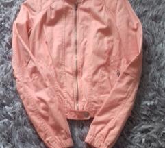 Prelepa berska jaknica 1000
