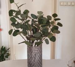 Vaza sa biljkom