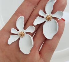 Mindjuse beli cvet