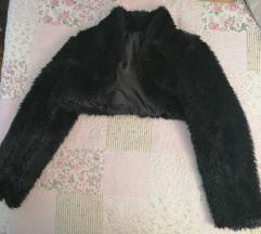 Crna bundica kratka