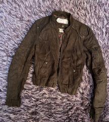 Brshka jaknica