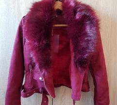 Nova bordo jaknica