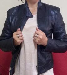 Mona jaknica
