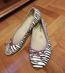 RAXMAX France zebra baletanke kao nove25cm