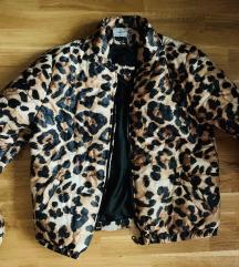 Tigrasta jaknica