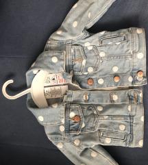 Carters teksas jaknica