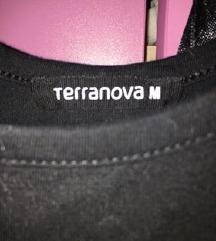 terranova body