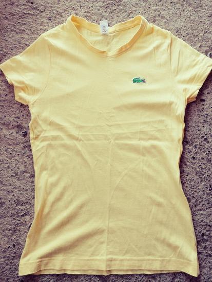 Lacosta majica