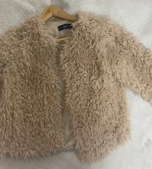 Pufnasta jaknica