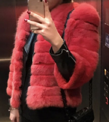 Crvena bunda 18000 danas