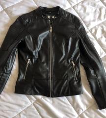 Terranova jaknica S🌸