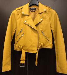 NOVA CROP kozna jakna