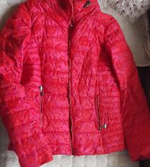 Prolecna moderna jaknica