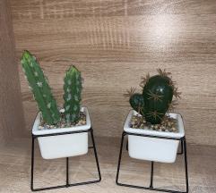 Kaktus - dekoracija