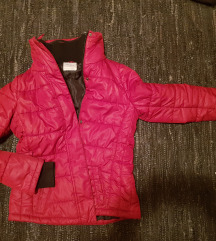 Springfild nova jakna