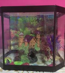 Akvarijum sa celom opremom