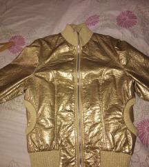 Zlatna suskava jaknica