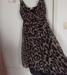 Leopard no.2