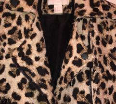 Nova H&M tigrasta jakna