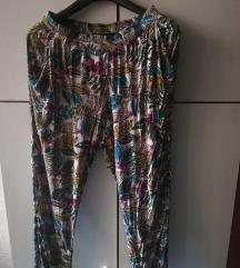 Cvetne pantalonice