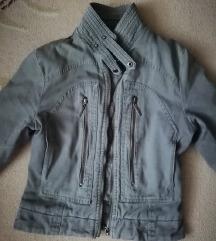 Prolecna/jesenja jaknica