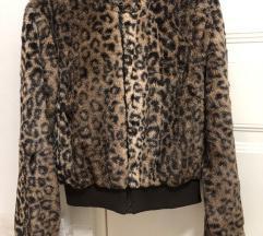 Leopard bundica kao nova
