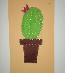 Slika kaktus I jos knjige