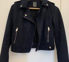 Prolecna teget jaknica
