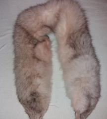 polarna lisica okovratnik