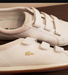 Bele Lacoste patike cipele