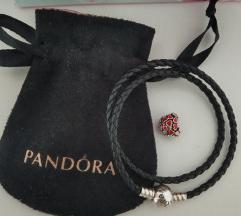 Pandora Ale