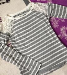 Majicica teranova