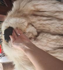 Bunda polarna lisica