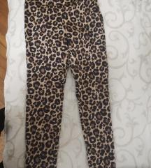 Tigrasto pantalone
