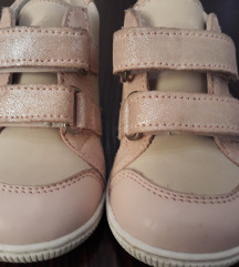 Pavle cipele 20