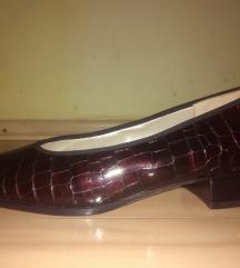 HASSIA savrsene zenske kozne cipele  NOVO