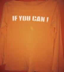 Narandžasta 🧡