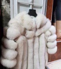 Polarna lisica bundica