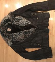 Only jaknica, M velicina