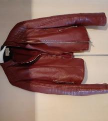 bordo rokerska  kožna jakna